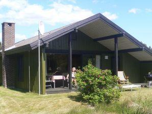 Ferienhaus Blåvand, Haus-Nr: 80201