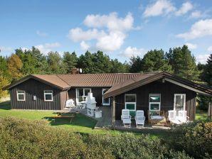 Ferienhaus Pandrup, Haus-Nr: 13912