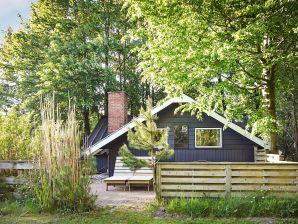 Ferienhaus Toftlund, Haus-Nr: 62026