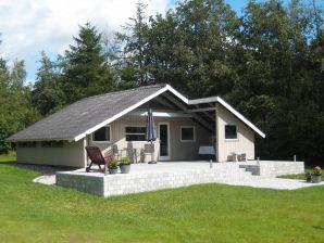 Ferienhaus Toftlund, Haus-Nr: 62085