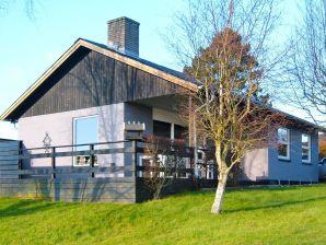 Ferienhaus Roslev, Haus-Nr: 63358