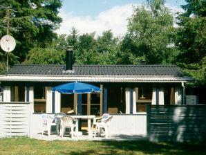 Ferienhaus Rødby, Haus-Nr: 42070
