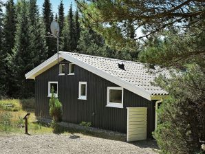 Ferienhaus Houstrup, Haus-Nr: 69717