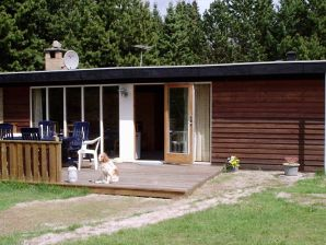 Ferienhaus Sæby, Haus-Nr: 11143