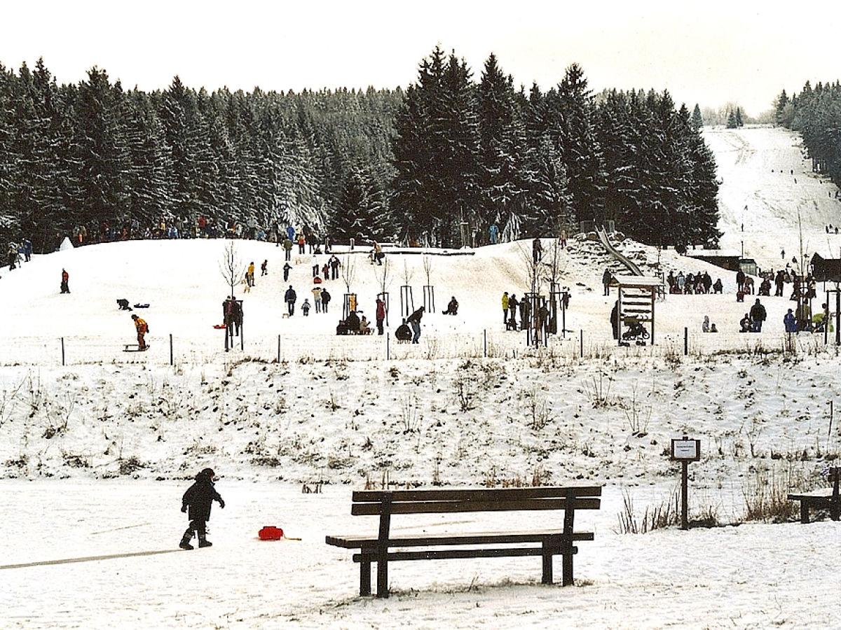 Ferienwohnung annelore und axel holten idar oberstein for Miniteich winter