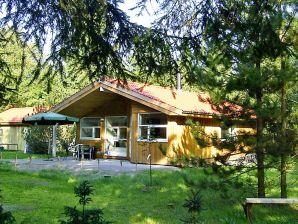 Ferienhaus Væggerløse, Haus-Nr: 28835
