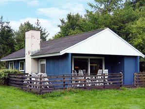 Ferienhaus Toftlund, Haus-Nr: 62081