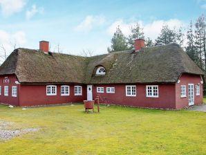 Ferienhaus Nørre Nebel, Haus-Nr: 95367