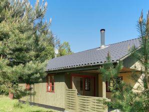Ferienhaus Aakirkeby, Haus-Nr: 35565