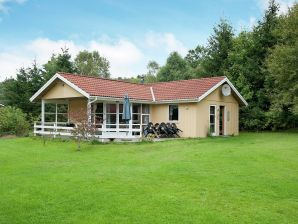 Ferienhaus Silkeborg, Haus-Nr: 92499