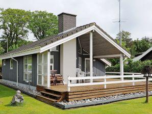 Ferienhaus Ebberup, Haus-Nr: 68080