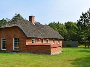 Ferienhaus Ulfborg, Haus-Nr: 92885