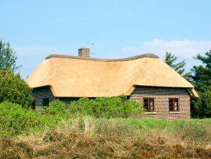 Ferienhaus Blåvand, Haus-Nr: 80398