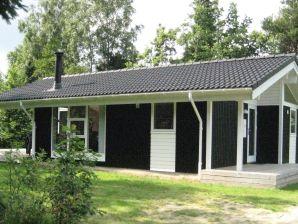 Ferienhaus Silkeborg, Haus-Nr: 33561