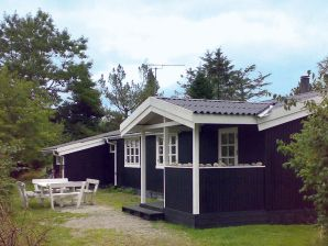 Ferienhaus Gilleleje, Haus-Nr: 33896