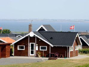 Ferienhaus Lemvig, Haus-Nr: 26152