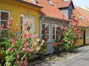 Ferienhaus Rudkøbing, Haus-Nr: 61919