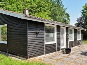 Ferienhaus Silkeborg, Haus-Nr: 67675