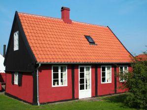 Ferienhaus Svaneke, Haus-Nr: 38879