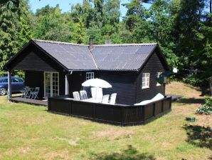 Ferienhaus Nexø, Haus-Nr: 39018
