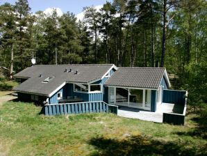 Ferienhaus Nexø, Haus-Nr: 31063