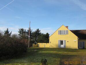 Ferienhaus Blåvand, Haus-Nr: 82471