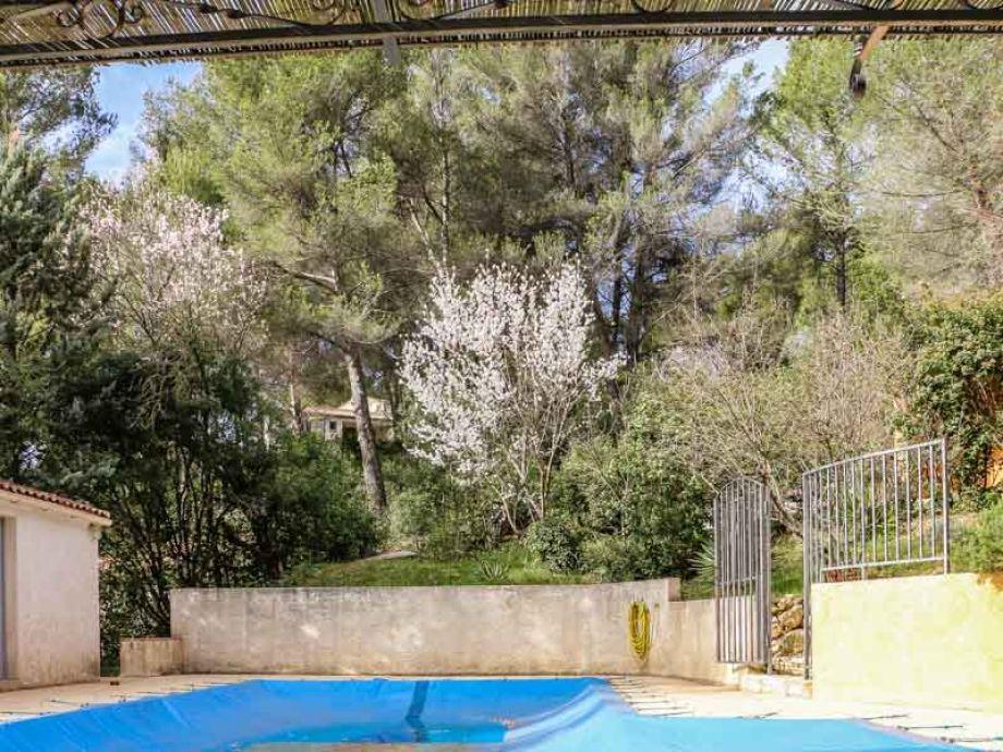 Villa le carrelet s dfrankreich provence bouches du for Gartenpool 5m