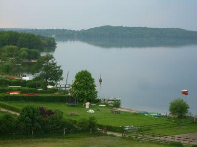Heckenrose am Plöner See