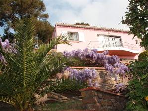 Villa Bellevue San Peire