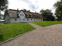 Ferienhaus Dünenwarft - Neubau unter Reet - Alleinlage