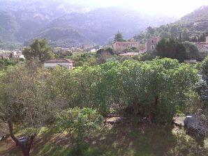 Ferienwohnung Buena Vista