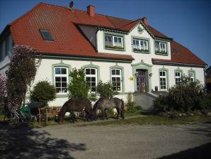 Ferienhof Landgut Plath mit Streicheltieren