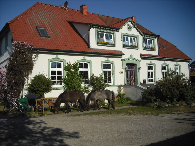 Ferienhaus auf dem Ferienhof Plath mit Streicheltieren