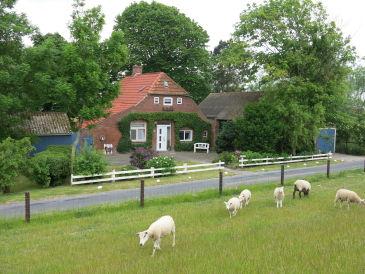 "Ferienhaus ""Butjenter Haus"" am Deich"