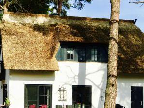 """Ferienhaus """"Cosy"""" Meine kleine Sansibar 2"""