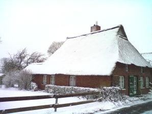 "Ferienhaus Reetdachhaus ""Swantje"""
