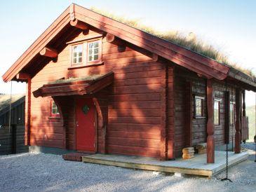 Ferienhaus Eikerapen, Haus-Nr: 29681