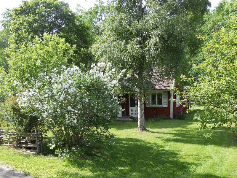 Ferienhaus 40232