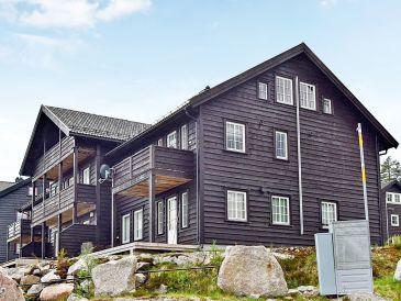 Ferienwohnung Bortelid / Åseral, Haus-Nr: 68081
