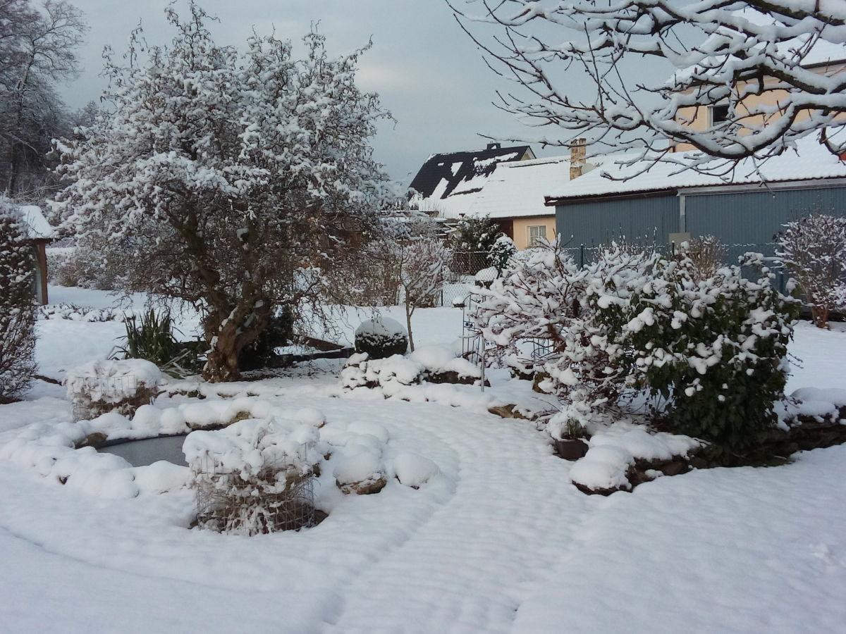 Ferienwohnung am oberen tor whg 1 oberfranken oberes for Teich im winter