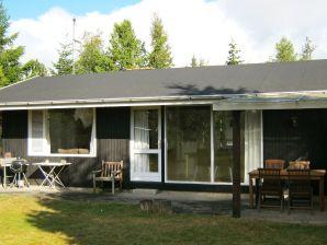 Ferienhaus Væggerløse, Haus-Nr: 77057