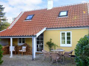 Ferienhaus Skagen, Haus-Nr: 78036