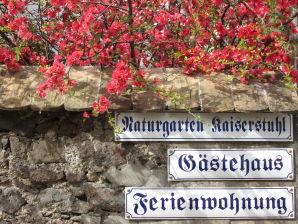 """Ferienwohnung """"Zur Weinrebe"""" im Haus Naturgarten (1. OG)"""