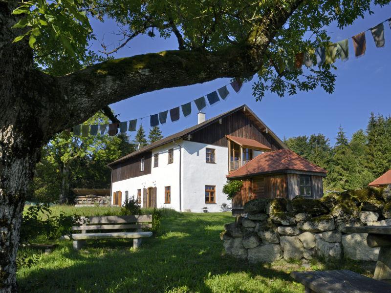 Landhaus auf entspannender Waldlichtung