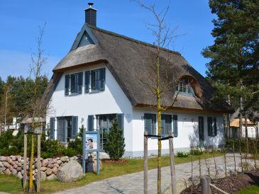 Ferienhaus Sterntaucher