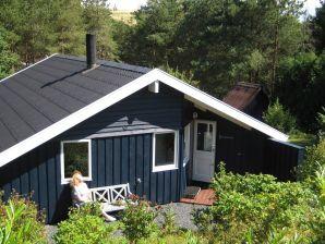 Ferienhaus Skibby, Haus-Nr: 49203