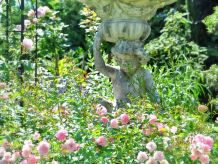 Ferienwohnung im Rosengarten