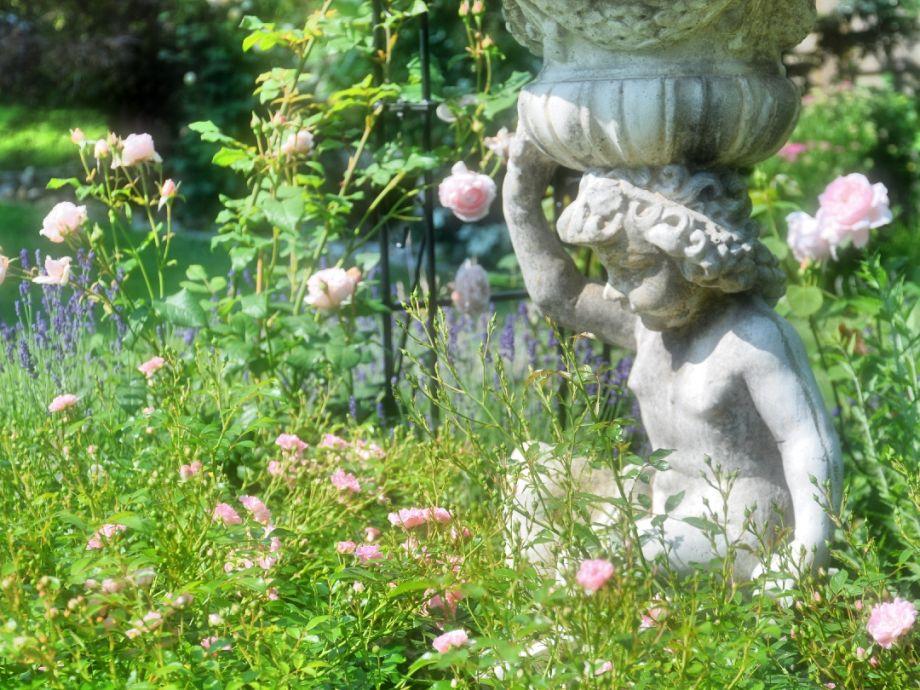 Außenaufnahme im Rosengarten