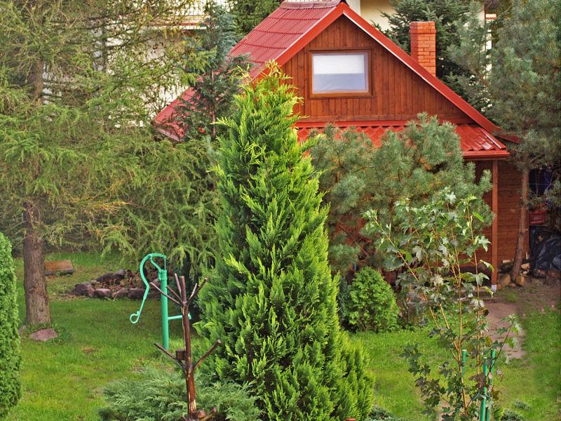 Ferienhaus Charming cottage