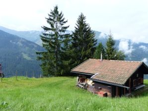 """Berghütte """"Sunnseitenalm"""""""